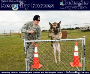 Senior Airman Heather Johnson, 5th Security Forces Squadron military working dog handler, instructs her MWD Cyndy to jump over a hurdle at the MWD obstacle course on Minot Air Force Base, N.D., July 29, 2014. Though Johnson stated she and Cyndy make a strong team, she also explained creating a bond with a K-9 takes a lot of time and effort. The pair usually work 14 to 15 hours a day guarding the base and its assets. (U.S. Air Force photo/Senior Airman Stephanie Morris)