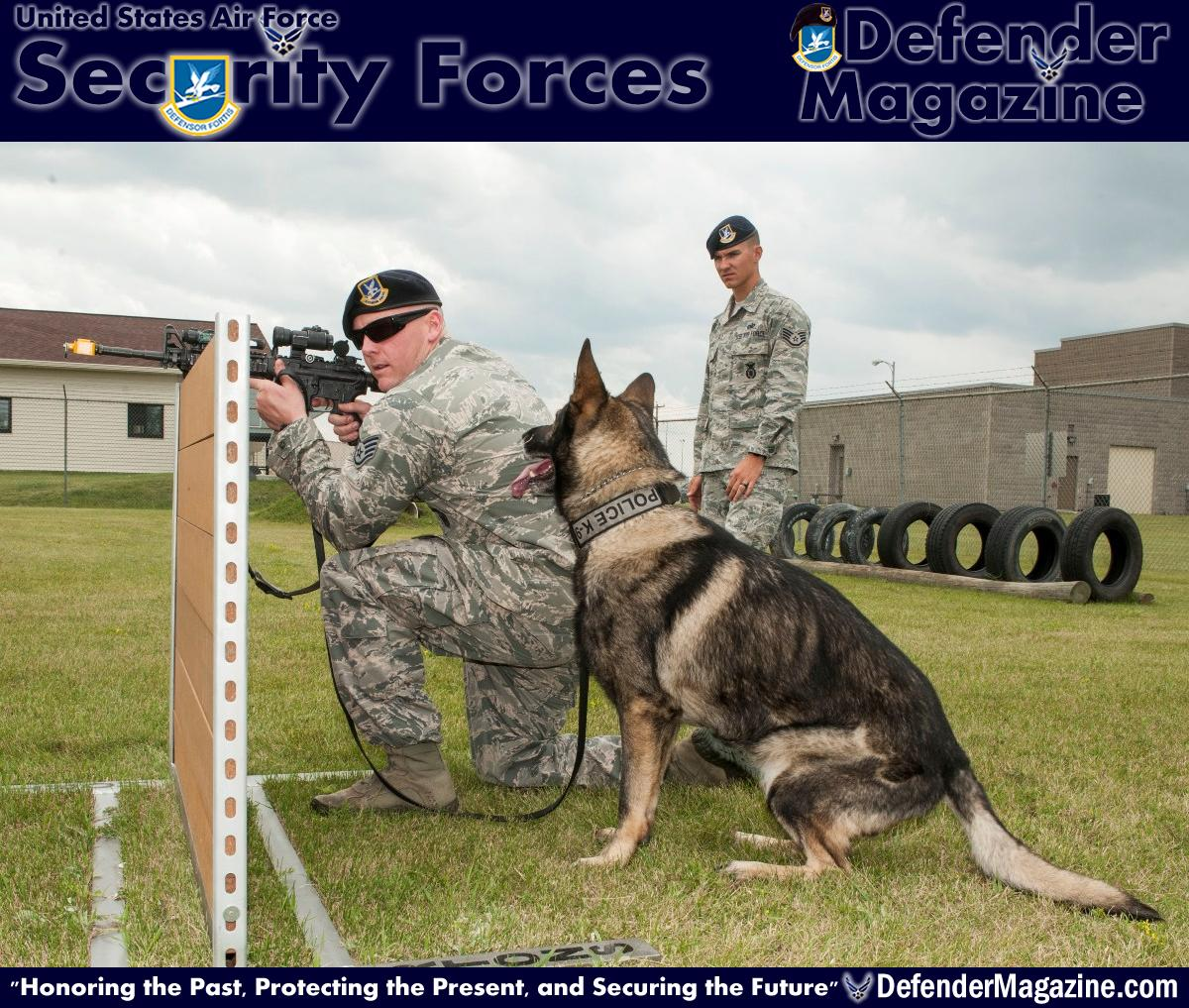 From pup to Alpha Staff Sgt. Tim Glover, 5th Security Forces Squadron MWD handler, gives his MWD Roko the command 'stay,' as Staff Sgt. Christopher Averill, 5th SFS MWD trainer, observes weapons training on Minot Air Force Base, N.D., July 29, 2014. During training, Averill watched as Glover used blank rounds to test Roko's reaction to the sound of gunfire and assessed Roko's ability to obey commands in a stressful environment. (U.S. Air Force photo/Senior Airman Stephanie Morris)