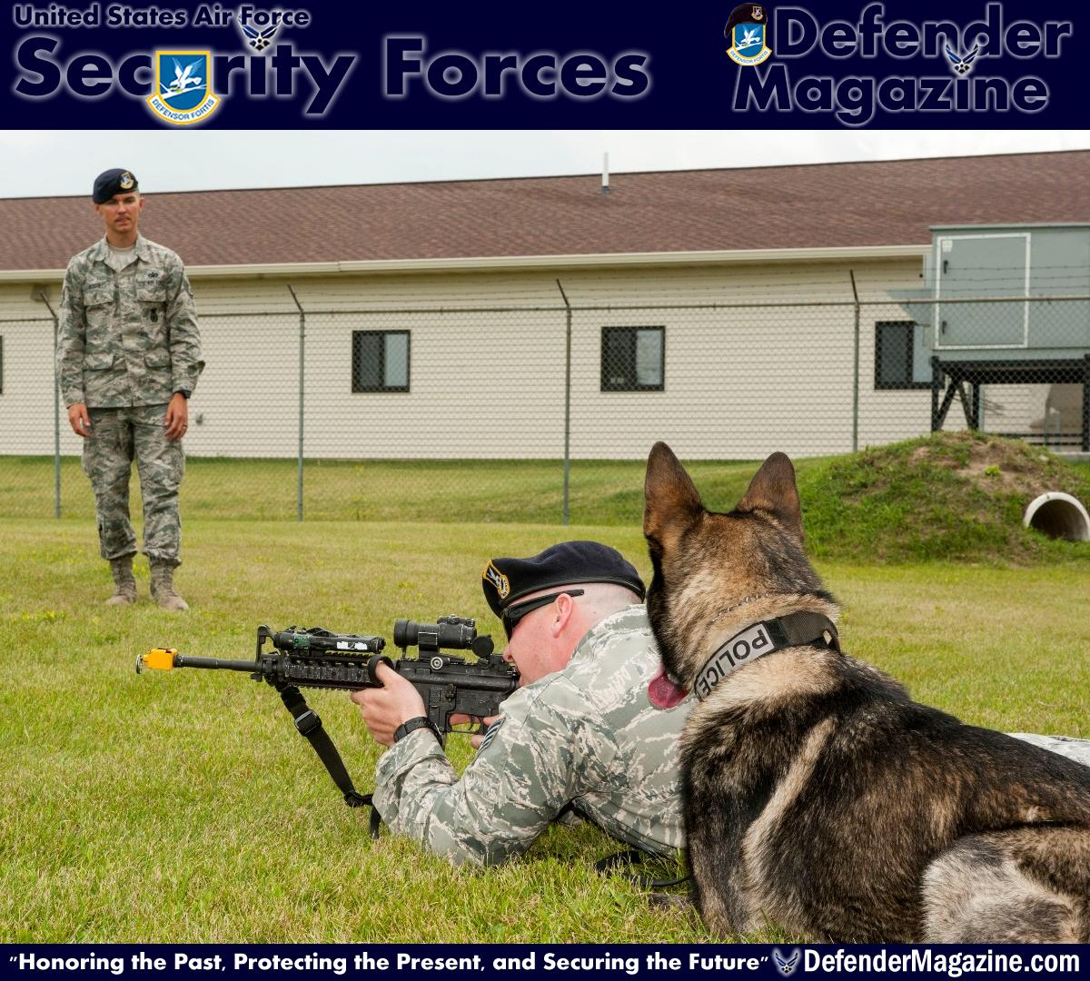 From pup to Alpha Staff Sgt. Christopher Averill, 5th Security Forces Squadron military working dog trainer, observes Staff Sgt. Tim Glover, 5th SFS MWD handler, and his MWD Roko during weapons training on Minot Air Force Base, N.D., July 29, 2014. During training, Averill watched as Glover used blank rounds to test Roko's reaction to the sound of gunfire and assessed Roko's ability to obey commands in a stressful environment. (U.S. Air Force photo/Senior Airman Stephanie Morris)